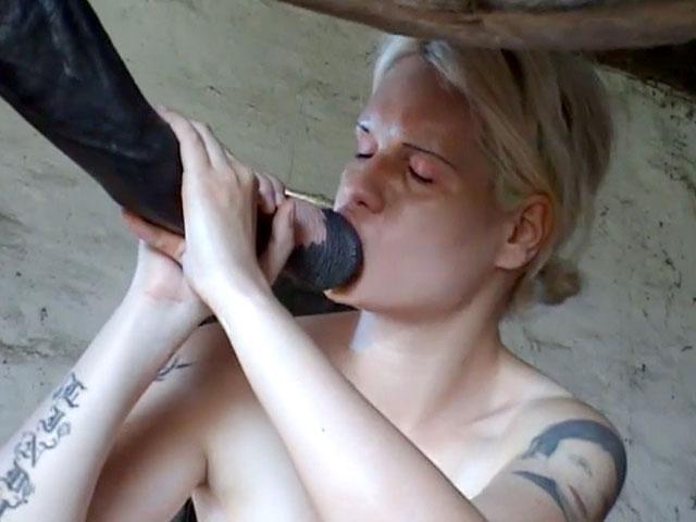 le sexe de cheval viole sexe